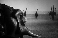 Image from: Monster from Green Hell (1957)